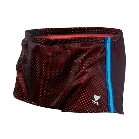Poly Mesh Trainer